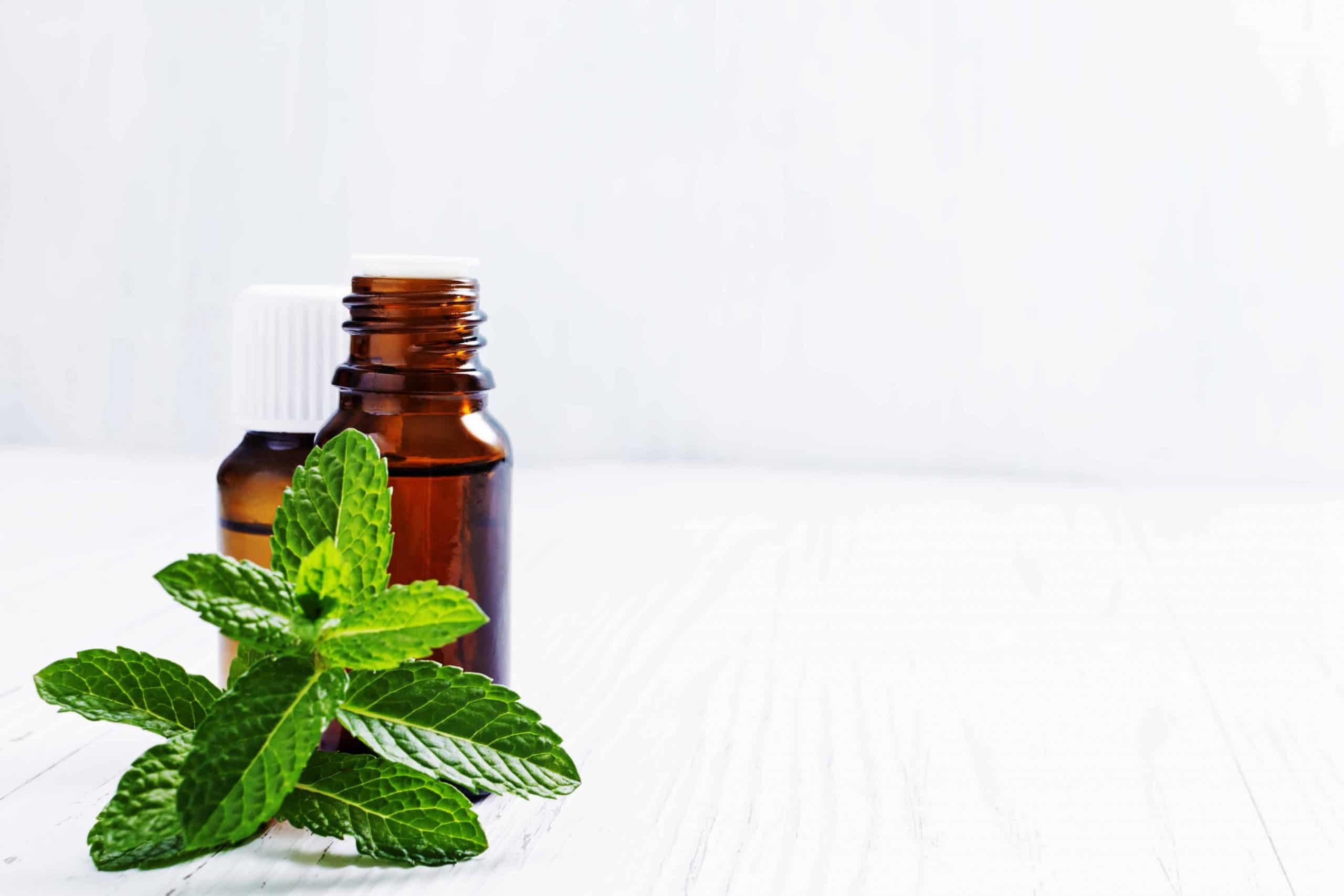 How to use peppermint oil - natural recipes